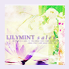lilymintsales