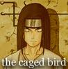 fated_bird userpic