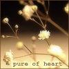 Pure of Heart