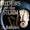 Riders seahorse