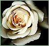dazymo userpic