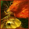 Angel Phoenix