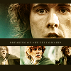 LotR: breaking of the fellowship