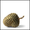contents under pressure / handle with care: food - durian