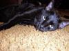 luckyletty03 userpic
