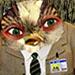 handwashed_pug userpic