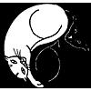 yin-yang, cat