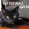 general gau 2005