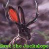 jackalope - by me