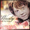 Weasley is my King //Mina
