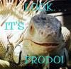 Ann: Misc -- frodo iguana