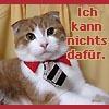 seidenstrasse userpic
