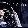 star wars // fallen angel