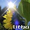 Holidays - Litha