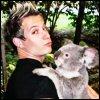 Annie: david. koala. gah. flail.