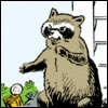 Angry racoon icon