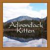 adk_kitten userpic