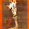 Jen the Spoiler Ho: Giraffe kiss by Rainne