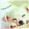 Ponks XD: Animals [*squee*]