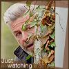 Joe watching