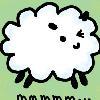 mmm sheep