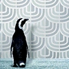 Wallpaper Penguin