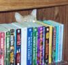 azzy books