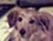 io14 userpic
