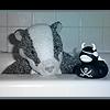 piratebadger userpic