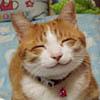 zhangster userpic