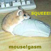 not your little girl: mouse!gasm