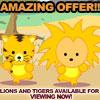 amazing offer!