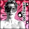 aecflower userpic