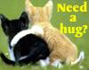 *M*K*C*: hug