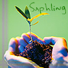 saphyria userpic