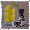 yuaelt: lemon