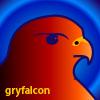 gryfalcon