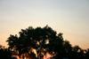 spinney101 userpic