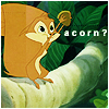 acorn: _ganar