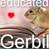 the oncoming whirlwind: gerbil: educated