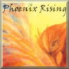 Phoenix Rising (a Harry Potter post-Hogwarts RPG)