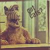 Alf got cats?