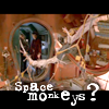 space monkeys wtf