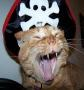 spooks_big_ear userpic