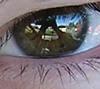 alli's eyes
