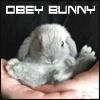 bunnythm userpic