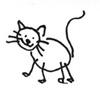 lavinas cat