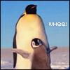 plus one skeleton: Penguin whee!