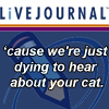 lj about your cat