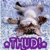 outsideth3box: Thud